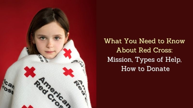 What You Need to Know About Red Cross Mission, Types of Help, How to Donate